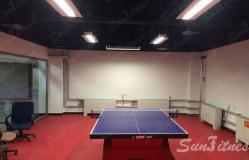 北京国家电网某乒乓球室照明工程